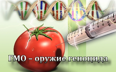 ГМО — оружие геноцида